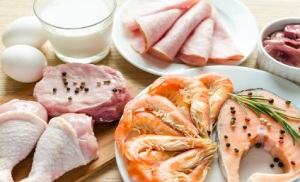 Weight Loss Foods - Meat and Fish